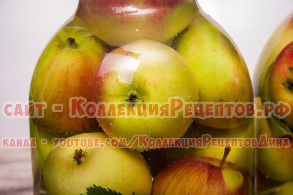 моченые яблоки в банки на зиму