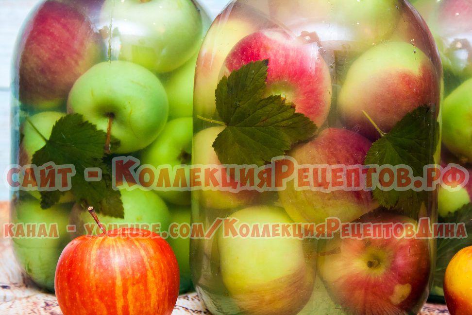 моченые яблоки в банки
