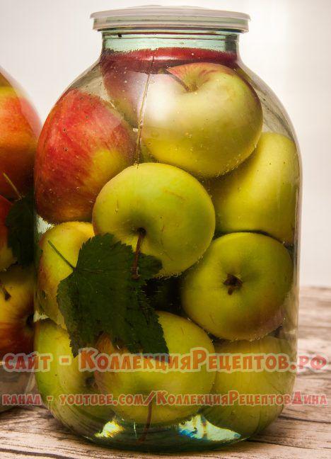 моченые яблоки в домашних условиях в банках