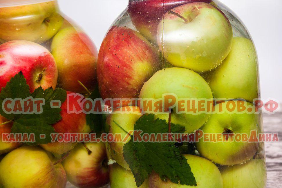 яблоки на зиму в домашних условиях
